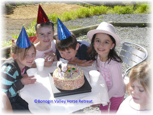 party_pony_face_painting_childrens_parties_gold_coast_brisbane_tweed